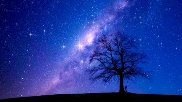 夜空に輝く星の光のように・バッハ『平均律クラヴィール曲集第1巻』